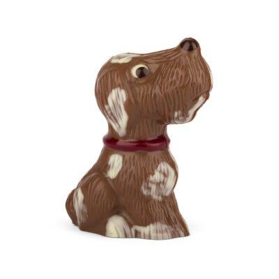 Kleiner Schoko Hund Bengelmann