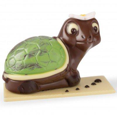 Schokoladen Schildkröte Bengelmann
